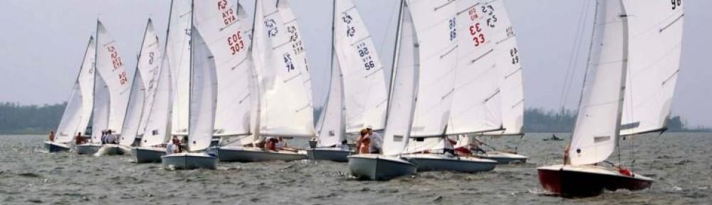 US Sailing Area D